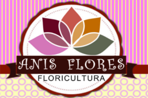 Anis Flores