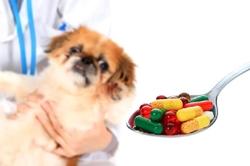 Medicamentos para Animais